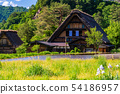 (Gifu prefecture) Shirakawago where the rice planting is finished 54186957