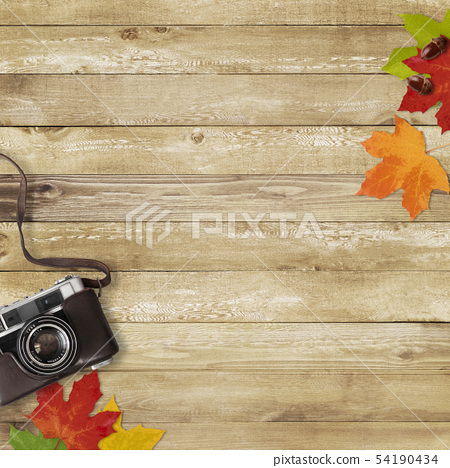 背景木五谷照相机下落的叶子秋天 54190434