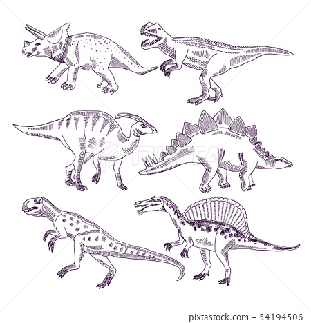 Wild life with dinosaurs. Hand drawn illustrations set of t rex and other dino types 54194506