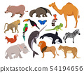 Zoo wild animals. Cute vector characters isolate on white 54194656
