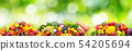 Panorama fresh fruits and vegetables on green 54205694