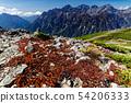 가을 경치의 북 알프스 · 蝶ヶ岳에서 보는 호 타카 연봉 54206333