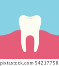 Flat design illustration of tooth and pink gums, 54217758