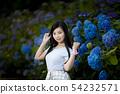 有長的黑髮的少婦有八仙花屬背景在Kamogawa公園,Nishinomiya市,兵庫縣 54232571