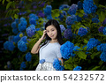 Young woman with long black hair with a background of hydrangea in Kamogawa Park, Nishinomiya City, Hyogo Prefecture 54232572