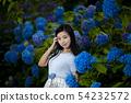 有長的黑髮的少婦有八仙花屬背景在Kamogawa公園,Nishinomiya市,兵庫縣 54232572