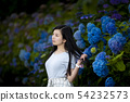 Young woman with long black hair with a background of hydrangea in Kamogawa Park, Nishinomiya City, Hyogo Prefecture 54232573