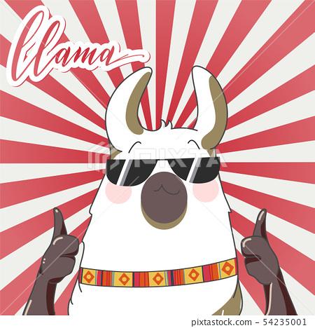 Lama in cartoon style.  54235001