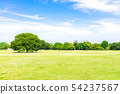 Landscape where fresh green and blue sky spread 54237567