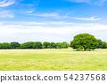 신록과 푸른 하늘이 펼쳐진 풍경 54237568