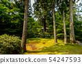Ohara Sansenin New Green 54247593