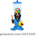 dog with a bathrobe  dressing gown 54252005