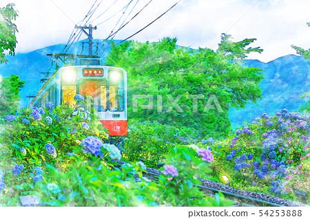 [水彩風格]箱根登山鐵道和繡球花的景觀 54253888