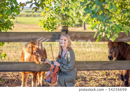 Violinist Connecting With Miniature Horses 54256699