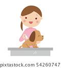 给射入的一位女性兽医的例证狗 54260747
