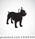 Vector of bulldog design on white background. Pet. 54265449