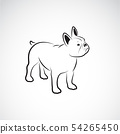 Vector of bulldog design on white background. Pet. 54265450