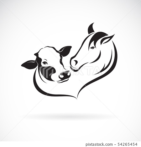 Vector of horse head and cow head design. Animal. 54265454