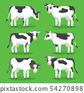 Farm animals cows isolated on green background. Set of white and black cows in flat style, for logo 54270898