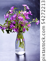 Wild violet flowers in glass bottle on black 54272213