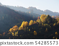 Autumn landscape with a beautiful forest in the 54285573