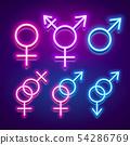 Various gender identities and sexualities, neon 54286769
