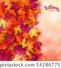 Vector background with colorful autumn leaves, 54286775
