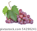 Red grape isolated on white background 54290241