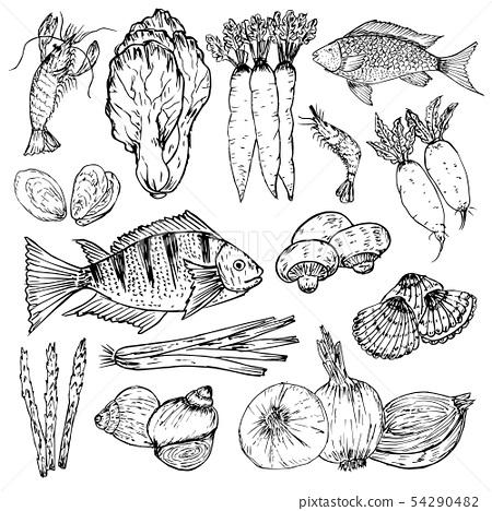 Set of hand drawn organic food. Organic herbs. 54290482