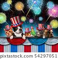 Fourth Of July Pet Celebration 54297051