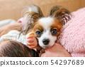 강아지와 아기 54297689