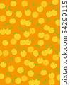 柑橘,柚子,胡蘿蔔背景圖案 54299115