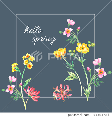 色彩豐富的水彩花卉組合 54303781