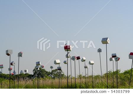 하늘공원,마포구,서울 54303799