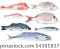 fresh fish collage in white background 54305837