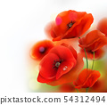 Red Poppy flower background. Vector illustration 54312494
