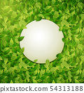 Round banner on green leaves background, vector 54313188
