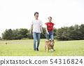 Shiba Inu和一對夫婦在公園散步 54316824