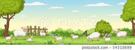 Panorama Landscape With Sheep 54318699