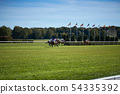 Riding horses on horse races against background of sunny sky 54335392