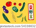 Summer Vegetable Illustration Set 54336632