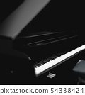 Piano detail in dark space 54338424