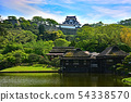 Hikone castle 54338570