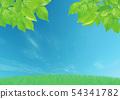 신록 초원 푸른 하늘 54341782