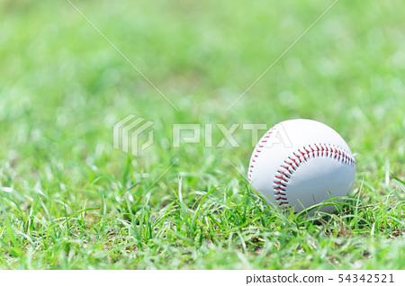 棒球圖像球 54342521
