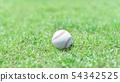 야구 이미지 공 54342525