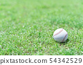 棒球圖像球 54342529