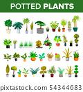 Floral Green Home Decorative Houseplant Set Vector 54344683