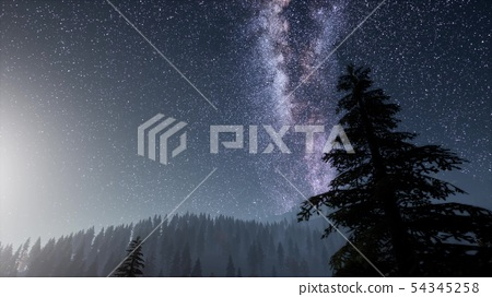 Milky Way stars with moonlight above pine trees 54345258