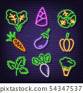 vegetable neon icons 54347537